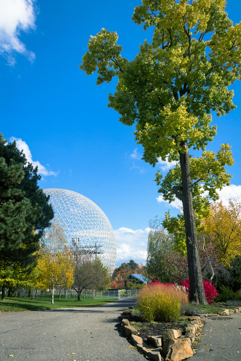 A view of the Biosphere