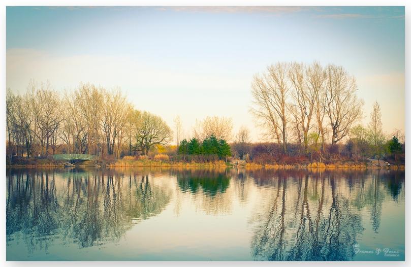 Vintage reflection
